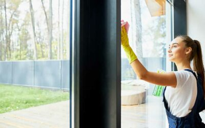 The Importance of Regular Window Cleaning